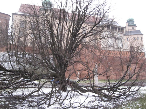 Cracow1218