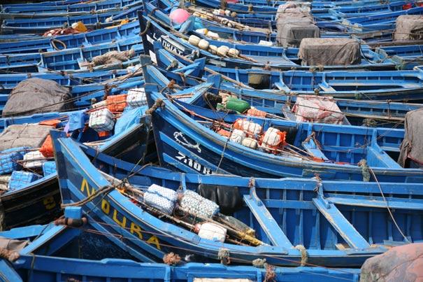blueboats0249