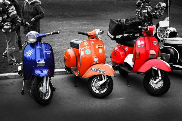 Scoots1499C